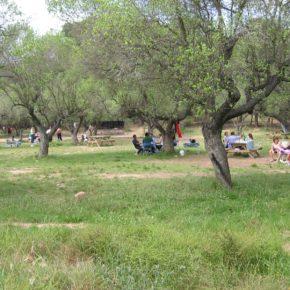 La zona de pícnic de la Masia d'en Cabanyes romandrà tancada al públic en motiu del Vida Festival