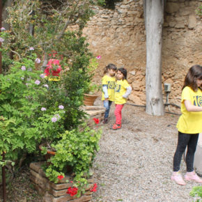Activitat 1: La Masia d'en Cabanyes: bosquet, art i cultura