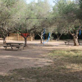 La zona de pícnic de la Masia d'en Cabanyes  romandrà tancada al públic del 19 de juny al 7 de juliol en motiu del Vida Festival